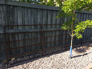 Cattle Gate for sale-REDUCED PRICE