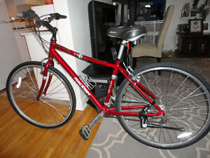 Great Adult Size RALEIGH Hybrid Commuter Like New!