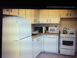Newly Renovated Clean One Bedroom Furnished Unit