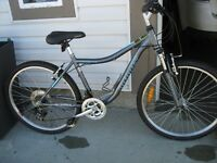 Infinity Meridian One 21 speed mountain bike - ON HOLD SALE PEND