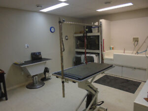 Full service  grooming room available for use