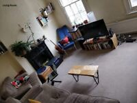 Bright, clean double room. zone 2.
