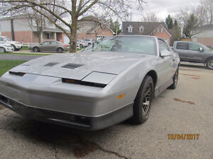 MUST SEE 1985 Trans Am