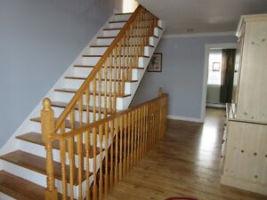 Luxury at 56 Hallstown Rd in North River - MLS 1127899 St. John's Newfoundland image 7