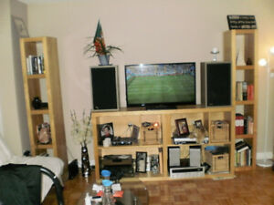 Tv Stand & towers
