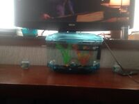 Small fish tank with fish and extras for sale or swap
