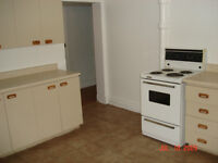 Large nice 4 1/2 (basement) in NDG (for JULY)