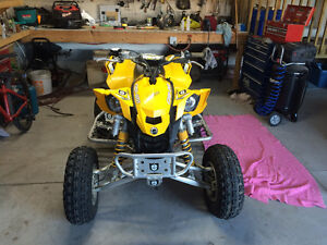 Can am DS450