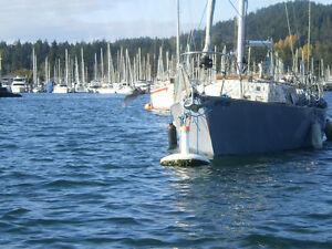 Sidney Mooring For Sale - Tsehum Harbour