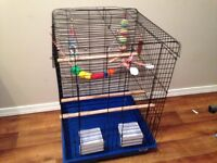Bird Cage medium