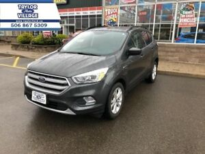 2017 Ford Escape SE  - $159.93 B/W