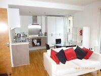 Modern one bedroom flat in luxury development in Fountainbridge