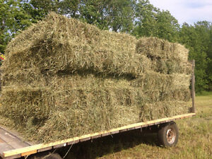 2017 Grassy Hay for Sale