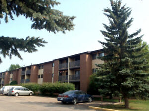 UPGRADED 2 BD CONDO ADJACENT TO WILDWOOD GOLF COURSE