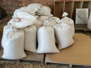 Rolled oats, barley, wheat. Can mix for chicken feed