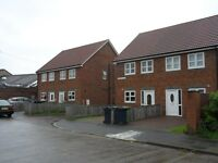 Town End Farm,Sunderland. 3 Bed Immaculate House with Garden,Off-Street parking.No Bond!DSS Welcome!