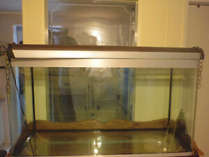 88+ US Gal tank, perfect condition. Edmonton Edmonton Area image 4