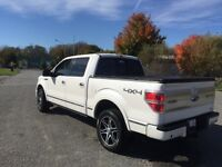 Loaded! F-150 platinum mint condition!