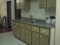 2 Bedroom furnished apartment ( Central )