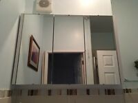 Mirror cabinet for a bathroom