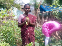 Sustainable agriculture and organic farming program in India