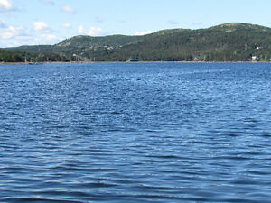 WATERFRONT PROPERTY…….4 DOCK ROAD, COLLIERS St. John's Newfoundland image 2