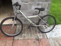 Chrome mountain bike
