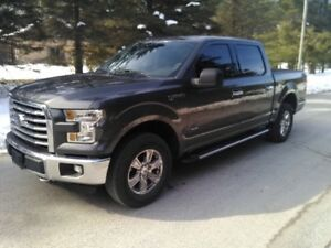 2015 Ford F-150 XTR Camionnette