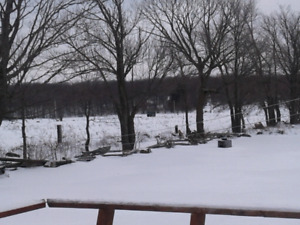 96 acre farm and recreational property.