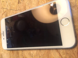 White\Gold iPhone 6 16GB Rogers