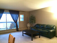 Fully Furnished suite in downtown (city centre) for rent