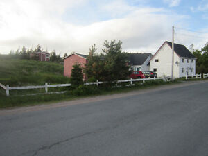 North River Hobby Farm with Historic Saltbox (1852) St. John's Newfoundland image 10