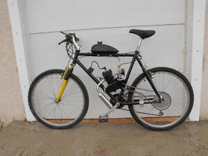 Gas Powered Bicycle....Fresh Build...Never Fired Up