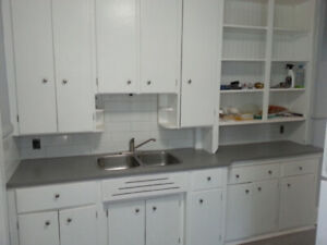 Newly Renovated Large 2 Bedroom near Downtown - All Inclusive