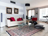 Relally Big Furnished condo with 1000 sqft terrace