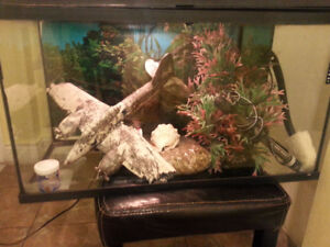 Complete fish tank with accesory .