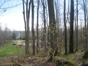 Cottage Lots - Wiarton