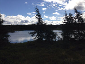 Commercial Land for Sale in Bay Roberts on Beaver Pond!!! St. John's Newfoundland image 1