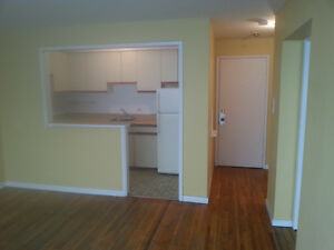 One bedroom and den available