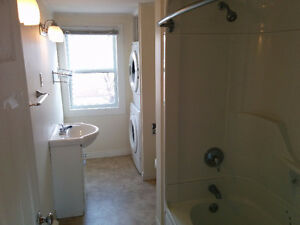 December 1st - 3 Bedroom Upper Level Apartment CBS $950 POU St. John's Newfoundland image 9