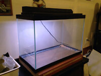 20 gallons fish  tank with lights and hood