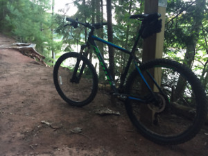 Trusty Steed looking for new rider