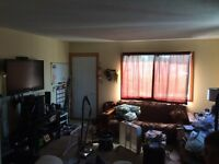 2 Bedroom apartment in Bayside