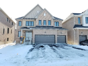 New House for Rent $2350, 4 bed 4 baths, 3 car and tones of upgr