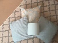 3 cushions and duck egg blue lampshade