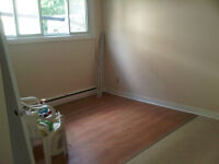 ***NEWLY RENOVATED BACHELOR APT.*** HOMER WATSON/OTTAWA