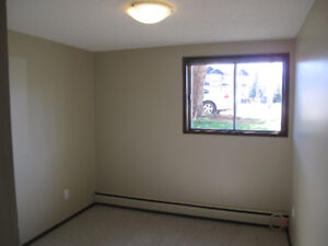 LOVELY 2 BR BASEMENT SUITE WAITING FOR YOU TO MAKE IT HOME