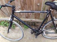 Viking fixed gear bike
