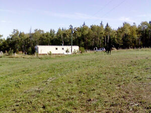 9.96 acres land for sale,mobile,septic,well,extra shed for Horse