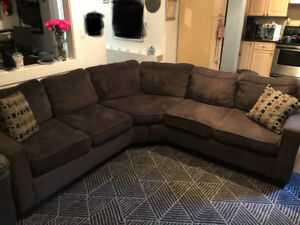 Chenille sectional from the brick